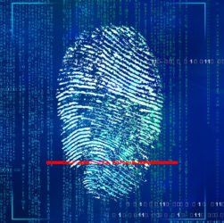 Identity Protection Shields Someone From Identity Theft And Fraudulent Unlawful Transactions