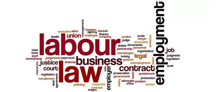 Incorporation of Employment Non-Discrimination Act Into Law