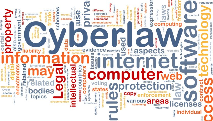 Is Government Taking Stronger Steps to Reduce Cyber Crimes?