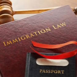 Migration Legal Advisors Are Legal Advisors Who Enable Individuals to Manage Forms