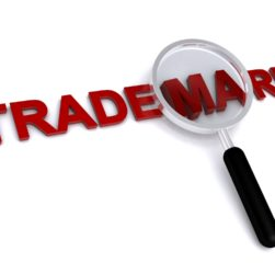 Trademark Law - Important Information on Civil Litigation